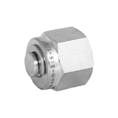 Stainless Steel Compression Fitting Plug